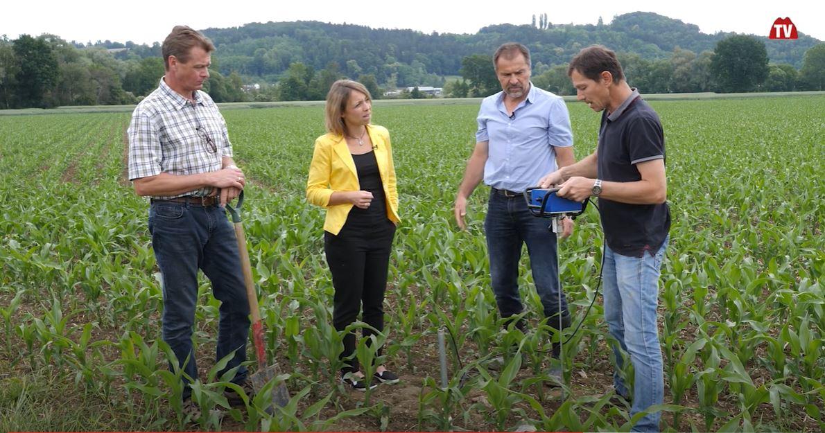 Voll Energie im Steirischen Vulkanland bei Landwirt Buchgraber in Unterweißenbach
