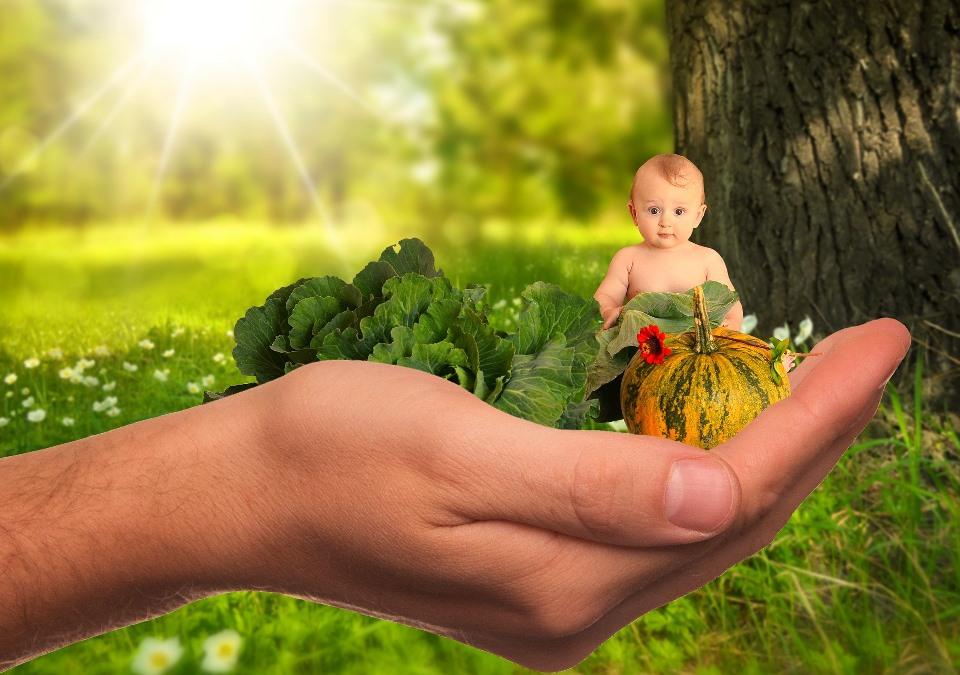 """""""Bewusst gesund:"""" Wie gesund sind unsere Kinder?"""