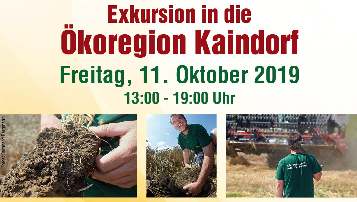 Exkursion in die Ökoregion Kaindorf, 11.10.2019